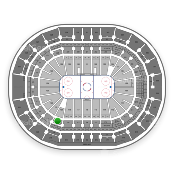 Tampa Bay Lightning at Amalie Arena Section 219 View