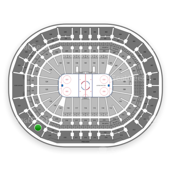 Tampa Bay Lightning at Amalie Arena Section 320 View