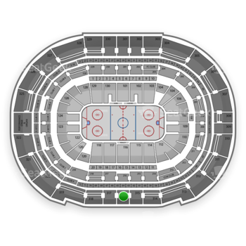 Tampa Bay Lightning at Amalie Arena Section 316 View