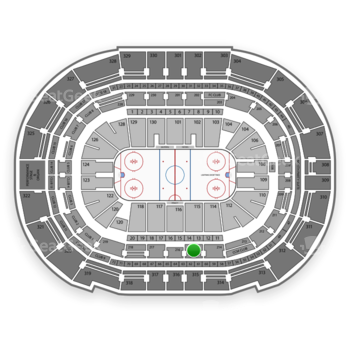 Tampa Bay Lightning at Amalie Arena Section 215 View