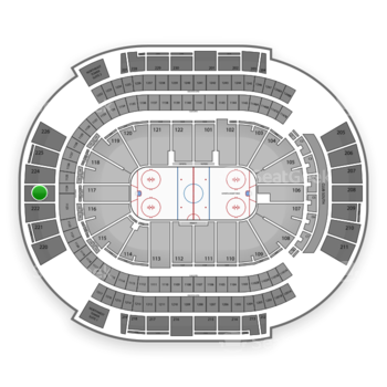 NHL at Gila River Arena Section 223 View