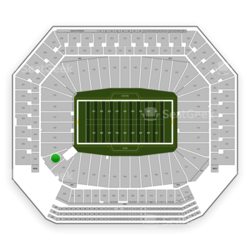 Detroit Lions at Ford Field Section 141 View
