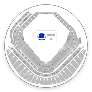 Tropicana Field Seating Chart Concert