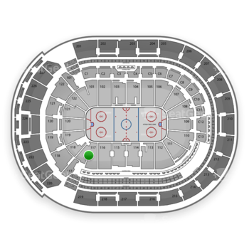 Columbus Blue Jackets at Nationwide Arena Section 117 View