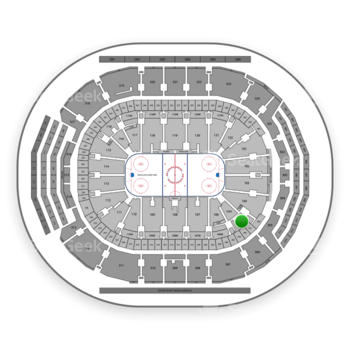 Toronto Maple Leafs at Air Canada Centre Section 105 View