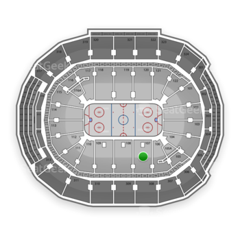 Toronto Maple Leafs at Air Canada Centre Section 107 View
