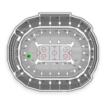 Toronto Maple Leafs at Air Canada Centre Section 113 View