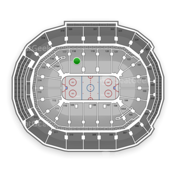 Toronto Maple Leafs at Air Canada Centre Section 118 View