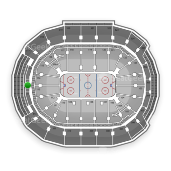 Toronto Maple Leafs at Air Canada Centre Section 315 View