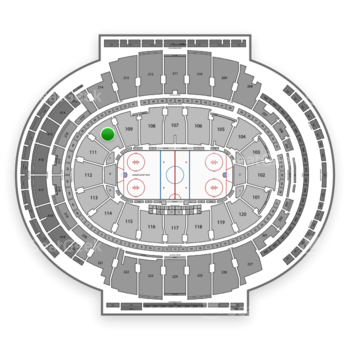 New York Rangers at Madison Square Garden Section 110 View