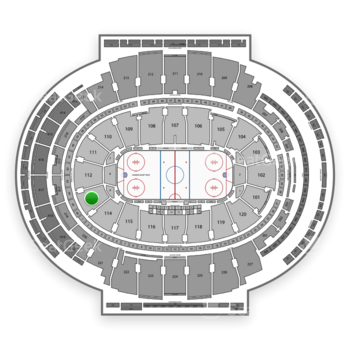 New York Rangers at Madison Square Garden Section 113 View