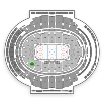 New York Rangers at Madison Square Garden Section 114 View