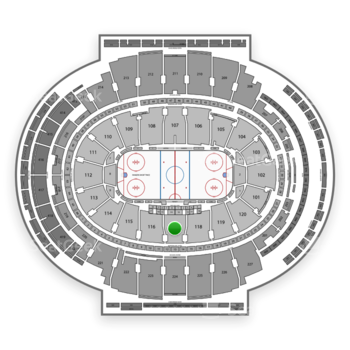 New York Rangers at Madison Square Garden Section 117 View