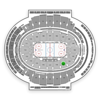 New York Rangers at Madison Square Garden Section 119 View
