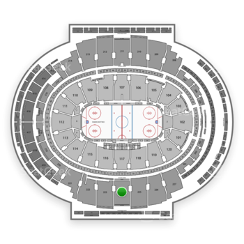 New York Rangers at Madison Square Garden Section 224 View