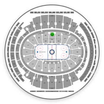New York Rangers at Madison Square Garden Section 107 View