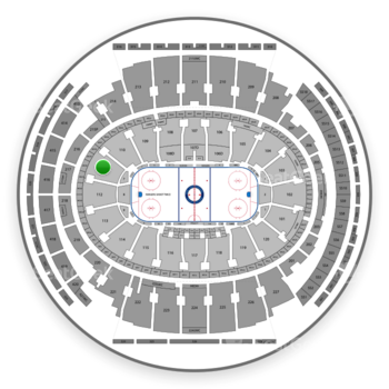 New York Rangers at Madison Square Garden Section 111 View