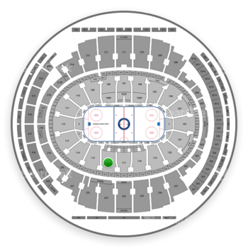 New York Rangers at Madison Square Garden Section 116 View