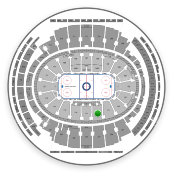 New York Rangers at Madison Square Garden Section 118 View