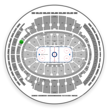 New York Rangers at Madison Square Garden Section 216 View