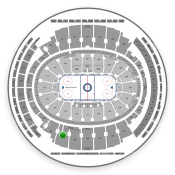 New York Rangers at Madison Square Garden Section 222 View