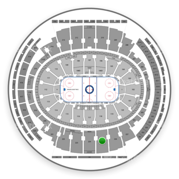 New York Rangers at Madison Square Garden Section 225 View