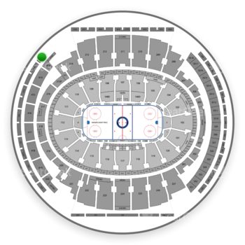 New York Rangers at Madison Square Garden Section 317 View