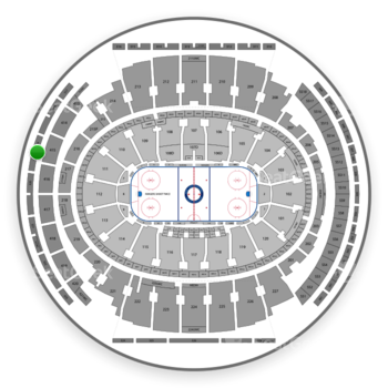 New York Rangers at Madison Square Garden Section 319 View