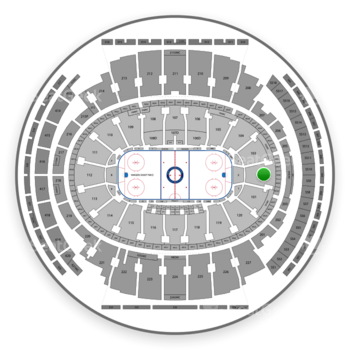 New York Rangers at Madison Square Garden Section 102 View