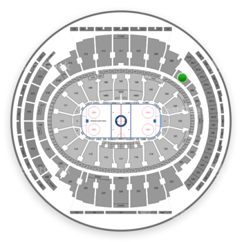 New York Rangers at Madison Square Garden Section 207 View