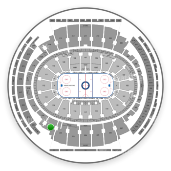 New York Rangers at Madison Square Garden Section 221 View