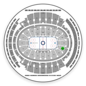 New York Rangers at Madison Square Garden Section 101 View
