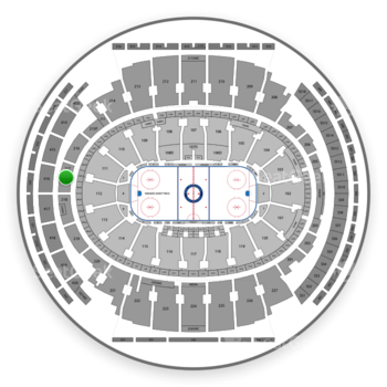 New York Rangers at Madison Square Garden Section 217 View
